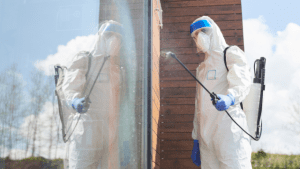 disinfecting-services