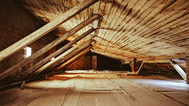 attic-mold-remediation-in-memphis-tennessee