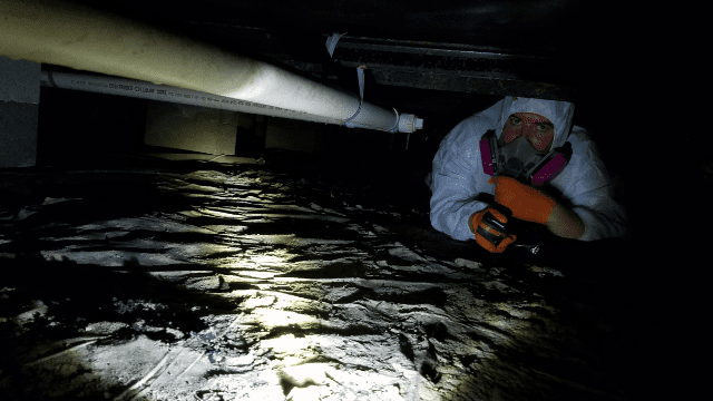 crawl-space-mold-remediation-memphis-tennessee